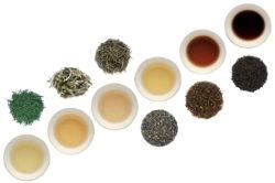 初心者でも最低限知っておきたいお茶の種類と見分け方