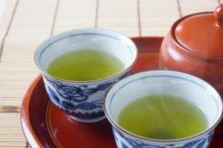 お茶の歴史をたどってみよう!茶とチャのルーツを探る