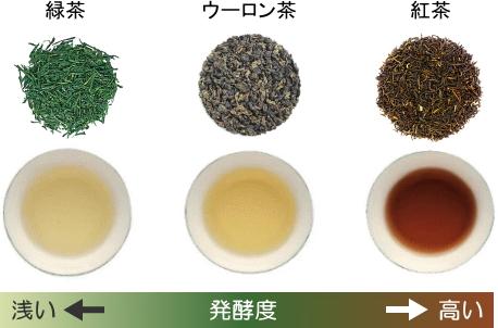 発酵度による茶葉と水色の違い(緑茶、ウーロン茶、紅茶)