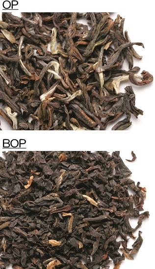 OP、BOPの茶葉
