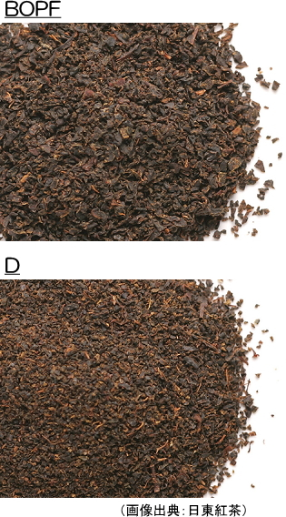 BOPF、Dの茶葉