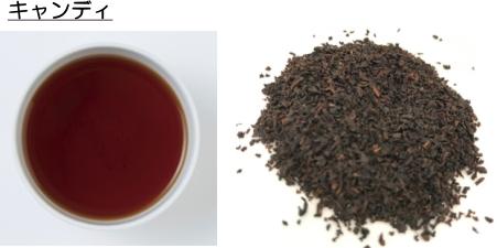 キャンディの茶葉と水色