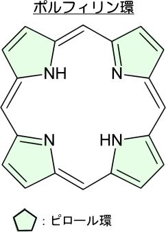 ポルフィリン環