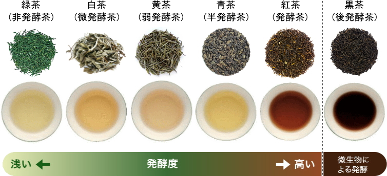 中国茶の分類