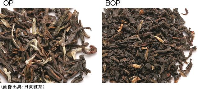 OPとBOPの茶葉