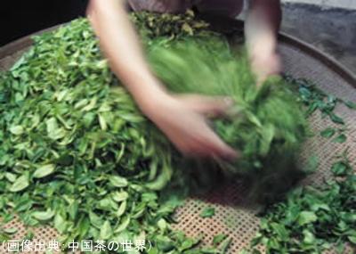 撹拌により発酵を進める(ウーロン茶)