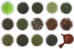 日本茶(緑茶)の種類と違いを知ろう!絶対知っておきたい日本茶の基礎知識