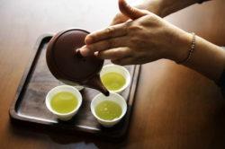 お茶の進化とこれからのお茶