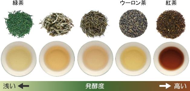 発酵度による茶葉と水色の違い(緑茶~紅茶)