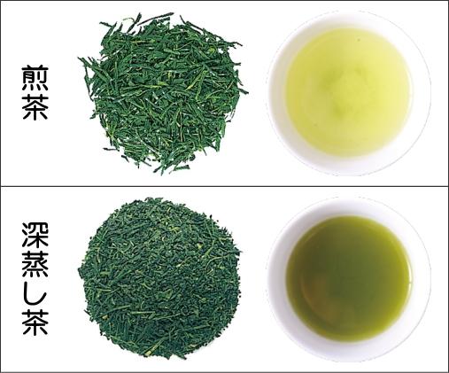 煎茶と深蒸し茶の比較(茶葉、水色)