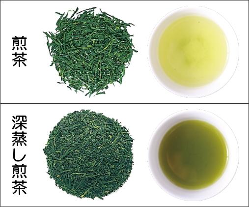 煎茶と深蒸し煎茶の比較(茶葉、水色)