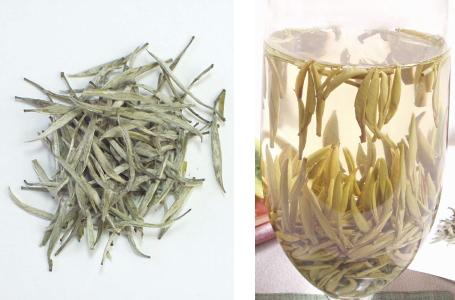 黄茶(君山銀針)の茶葉、水色