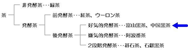 発酵に着目した茶の分類図と中国黒茶の位置付け