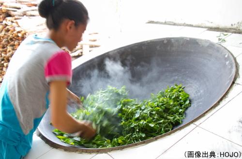 中国黒茶の釜炒り殺青